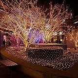 LTNT Lichternetz,Led Licht ,Weihnachten fee nets light,indoor oder outdoor dekoration(produkte bieten tail connection)-Warmweiß 2m*3m(79x118inch)