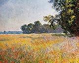1art1 90199 Claude Monet - Haferfeld Mit Mohnblumen, 1890 Poster Kunstdruck 50 x 40 cm