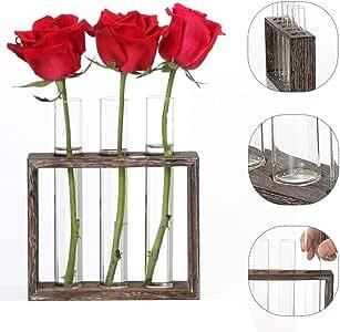 Fenteer Vase en Tube /à Essai en Verre de Cristal dans Un Support en Bois pour Plantes Hydroponiques 3 Tubes