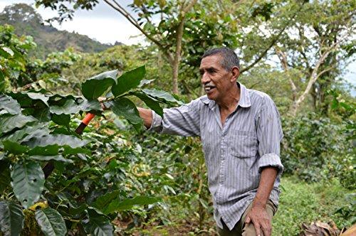 Happy Coffee Kaffeebohnen 1kg – Frisch geröstet – ganze Bohne – Premium Bio-Kaffee, Fair-trade, Arabica, Crema - 6