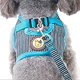 Hunde Geschirr Bowknot Brustgeschirre Air Mesh Harness Vest für Kleine, Mittelgroße Hunde Welpengeschirr mit 1.2M Hundeleine Katzen Walking Leine Hundegeschirr und Pet Leash (M, Blau)