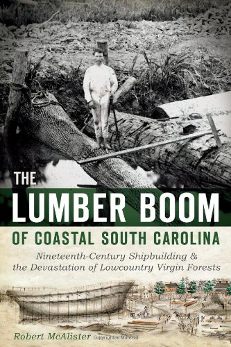 The Lumber Boom of Coastal South Carolina: Nineteenth-Century Shipbuilding and the Devastation of Lowcountry Virgin Forests - White Pine Lumber