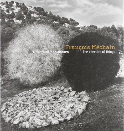 François Méchain : L'Exercice des choses