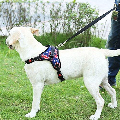 Hund Weste Harness Non-Pull weich gepolstert Hund Körper Harness einfach einstellbar Hund Ausbildung Walking Harness Weste Heavy Duty große Hunde Hilfe, Breathable Big Dog Chest Harness -
