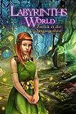 Labyrinths of the World: Zurück in die Vergangenheit [PC Download]