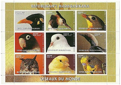 aves-de-la-hoja-de-sellos-menta-mundo-9-sellos-emitidos-en-1999-repblica-de-madagascar-mint-y-sin-mo