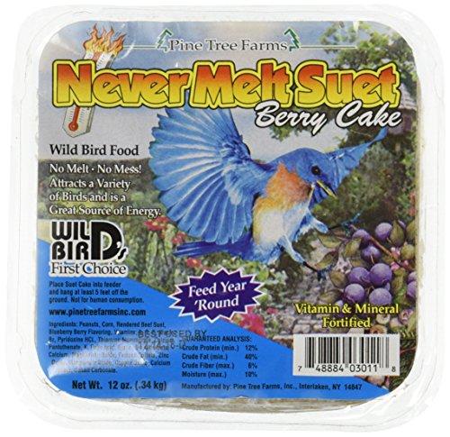 Never Melt Suet Berry 12 oz (Pine Finch Feeder)
