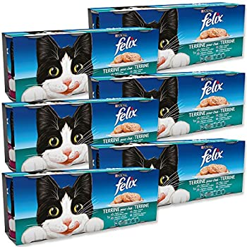 Felix Terrines pour chat adulte Viandes & Poissons 100 g - Lot de 24