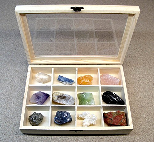 Mineral Import - Caja de Madera con 12 separadores para Piedras - 4187VC