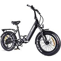 Accolmile Elektrofahrrad Klapprad Ebike Elektrofahrräder Klappräder Faltrad 20 Zoll, BAFANG 48V 750W Bürstenloser…