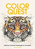 Color Quest Adult Coloring Book: Extreme Coloring Challenges to Complete