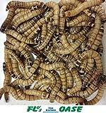 Zophobas LEBEND 1KG Futterinsekten Reptilienfutter Futtertiere Igelfutter Vogelfutter