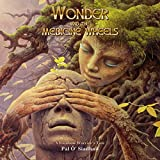 Wonder and the Medicine Wheels