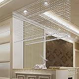 ZYCLSSRV Crystal perlenvorhang,Nach Hause commercia tür Bildschirm Glitzer String fassadenelement-G 59inch