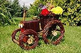 Traktor aus Korbgeflecht (Weide)++Pflanzhilfe, 60 cm, Rattan, Weidenkörbe, bepflanzen möglich, Rattan, Weinkörbe, Weidenkorb, Pflanzkorb, Blumentopf, Blumentöpfe, keine Holzschubkarre, Pflanztrog, Pflanzgefäß, Pflanzschale, Blumentopf, Pflanzkasten, Übertopf, Übertöpfe, Pflanztrog, Pflanztopf groß hell natur unbehandelt für Gartenhaus, Blumentopf, Holz, Haus und Eingang, Gartendeko, Dekoration Pflanzgefäß, Pflanztöpfe Pflanzkübel, Pflanzkarre