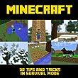 Minecraft: 30 Tips & Tricks in Survival Mode