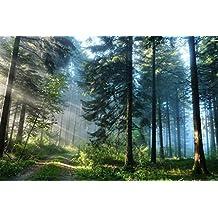Startonight Cuadro sobre Lienzo Camino en el Bosque, Impresion en Calidad Fotografica Enmarcado y Listo Para Colgar Diseño Moderno Decoración Formato Grande 60 x 90 CM