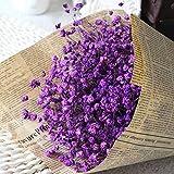 WDOIT - Ramo de Flores secas Naturales para decoración de casa, jardín, casa, Boda, Fiesta, 1 Unidades