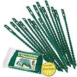 MGS SHOP Pflanzenbinder XL Länge 17 cm grün für Rankhilfe Rosenbogen Spalier schonende Pflanzenbefestigung (200Stück)