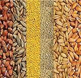 Bio Sechs-Korn Mischung 25 kg versandkostenfrei