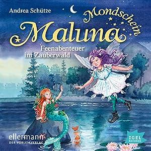 Feenabenteuer im Zauberwald: Maluna Mondschein