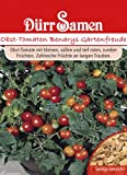 Tomatensamen Benarys Gartenfreude