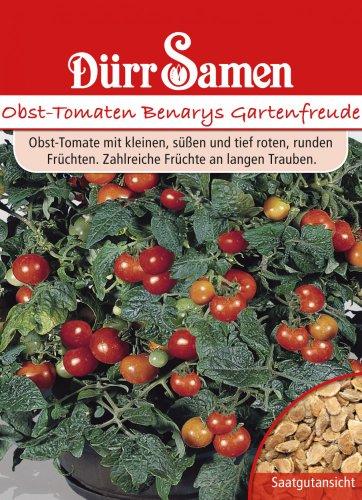 Dürr Samen 0532 Obsttomate Benarys Gartenfreude (Obsttomatensamen)
