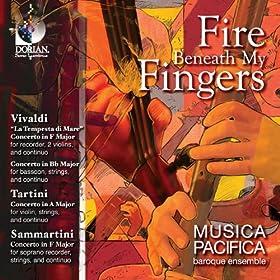 Bassoon Concerto in B-Flat Major, RV 503: I. Allegro non molto