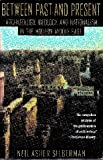 Between Past and Present: Archaeology, Ideology, and Nationalism in the Modern Middle East