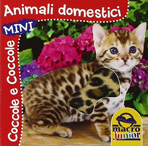 animali-domestici-coccole-e-coccole-mini