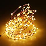 #5: TONY STARK ® 5 Meters 50LED Warm White Copper String LED Fairy Lights Battery Operated with Waterproof Battery Box Decorative Lights for Xmas Christmas Party