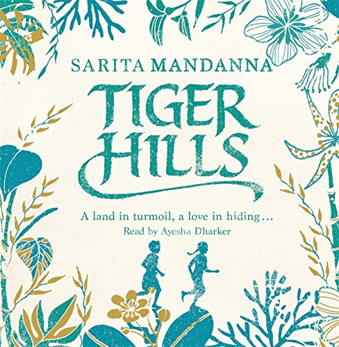 Tiger Hills: For fans of Elena Ferrante, a sweeping saga about family and fortune