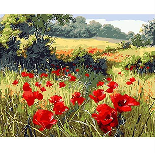 OKOUNOKO DIY Ölgemälde nach Zahlen Kits Red Wildflower für Erwachsene und Zeichenanfänger mit Pinsel haben Rahmen Hauptdekorationen, 40x50cm -