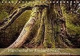 Märchenhafter Reinhardswald und Urwald Sababurg (Tischkalender 2019 DIN A5 quer): Unterwegs im sagenumworbenen Reinhardswald (Monatskalender, 14 Seiten ) (CALVENDO Natur) -