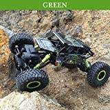 TopTan Kid's Dirt Drift Waterproof Remote Controlled Rock Crawler RC Monster Truck, 4 Wheel Drive, 1:18 Scale 2.4 Ghz (Green)