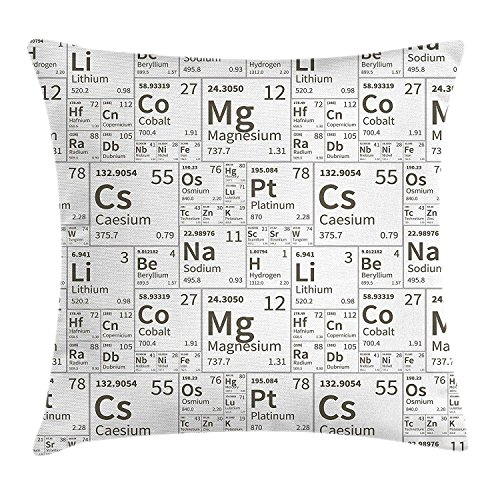 Pillow Cushion Cover, Monochrome Simple Science Chemistry Elements for Students Class Image, Decorative Square Accent Pillow Case, 18 X 18 Inches, Black and White ()