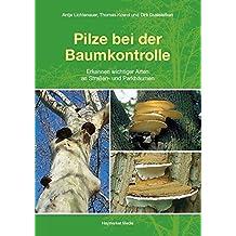 Pilze bei der Baumkontrolle: Erkennen wichtiger Arten an Straßen- und Parkbäumen