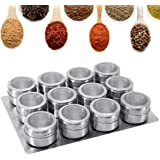 GoMaihe Magnetische Roestvrijstalen Kruidenpotjes 12 Stuks Set, Ronde kruidenpotjes Kruiden Shakers, Kruidencontainer Transpa