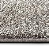 casa pura Shaggy Teppich Bali | Weicher Hochflor Teppich für Wohnzimmer, Schlafzimmer und Kinderzimmer | mit GUT-Siegel | Verschiedene Größen | viele Moderne Farben (250 x 300 cm, grau)