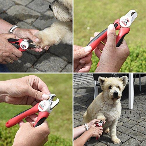 Smart Animal Professionelle Krallenzange – Krallenschneider für Krallenpflege für kleine, mittelgroße & große Hunde und Katzen mit integrierter Schutzvorrichtung und passender Nagelfeile - 6