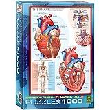 Puzzle 1000 Teile - Das menschliche Herz - 00257 von Eurographics