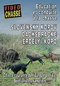 Slovensky kopov dachsbracke erdelyi kopo - Vidéo Chasse - Chiens de chasse