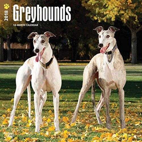 greyhounds-2018-calendar