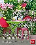 Welche Pflanze passt auf meinen Balkon?: Die besten Arten & Sorten für jeden Standort