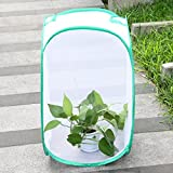 BIBIone Black Plant Greenhouse Transparent Waterproof Cultivation Room Anti - mosquito Box Butterfly Pet Cage butterfly plant(Black) Bild 4