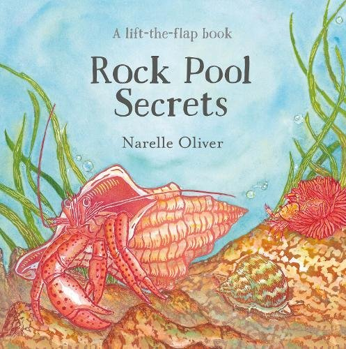 Rock Pool Secrets