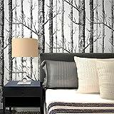 QXLML Tapete nordischen Stil 3D Stereo Wald Schwarz-Weiß-Zweige weiße Birke Tapete TV-Hintergrund Videotapete 10 * 0,53 (M)