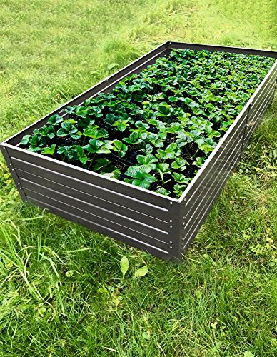 Hochbeet 01 verzinkt mit Pulverbeschichtung – Abmessungen: 150 x 75 cm (L x B)