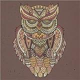 Posterlounge Acrylglasbild 120 x 120 cm: Kauz - Farben des Waldes von Editors Choice - Wandbild, Acryl Glasbild, Druck auf Acryl Glas Bild