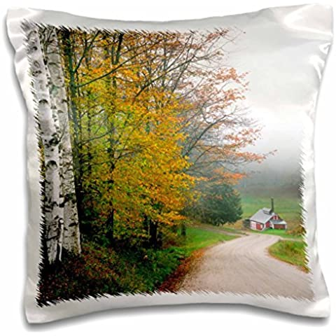 - Roads - USA, Vermont. Sugar house near the town of South Woodstock. - 16x16 inch Pillow Case